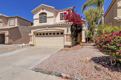 Phoenix Single Family Home For Sale: 2156 E Nighthawk Way