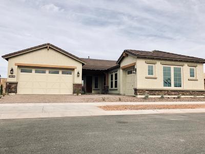 Mesa Single Family Home For Sale: 10362 E Topaz Avenue