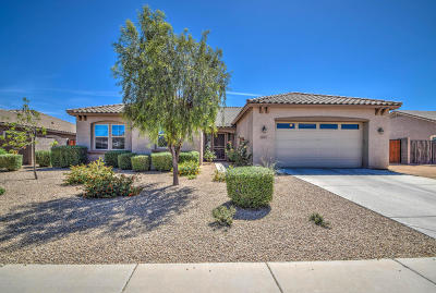 Litchfield Park Rental For Rent: 18607 W Oregon Avenue