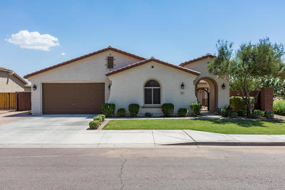 San Tan Valley Single Family Home For Sale: 1325 W Plane Tree Avenue