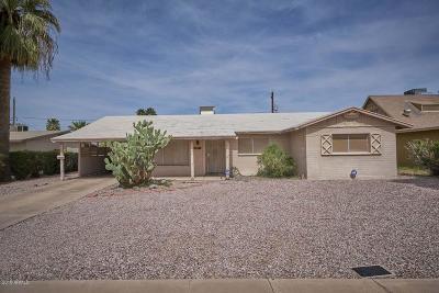 Tempe Single Family Home For Sale: 140 E Riviera Drive