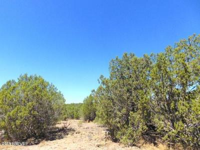Residential Lots & Land For Sale: 2035 W Picacho Drive
