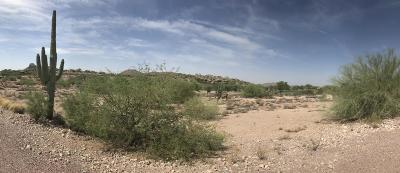 Gold Canyon Residential Lots & Land For Sale: 9233 E Superstition Mountain Drive