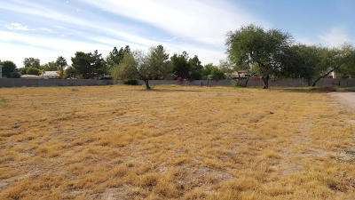 Tempe Residential Lots & Land For Sale: 12201 S 70th Street