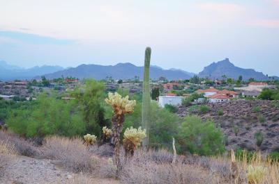 Fountain Hills Residential Lots & Land For Sale: 16219 E Ironwood Drive