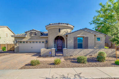 Queen Creek Single Family Home For Sale: 20219 E Rosa Road