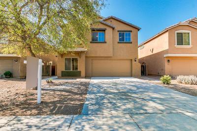 San Tan Valley Single Family Home For Sale: 1083 W Vineyard Plains Drive