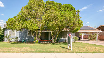 Chandler Single Family Home For Sale: 275 N Vine Street