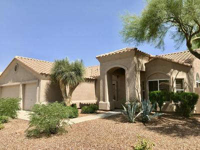 Cave Creek Single Family Home For Sale: 4871 E Skinner Drive