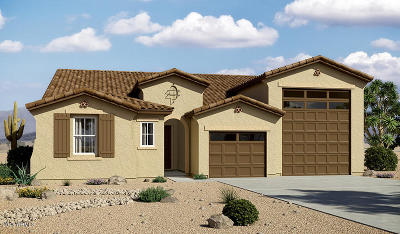 Surprise Single Family Home For Sale: 16082 W Shaw Butte Drive