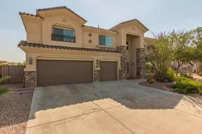 Surprise Single Family Home For Sale: 10922 N 153rd Lane