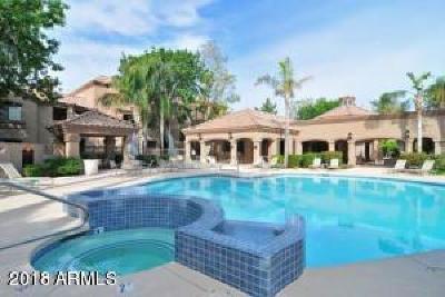 Scottsdale Apartment For Sale: 15095 N Thompson Peak Parkway N #2073