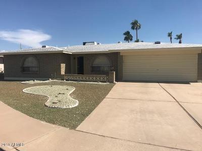 Mesa Single Family Home For Sale: 4349 E Carmel Circle