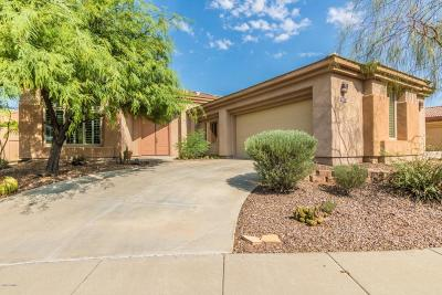 Fountain Hills Single Family Home For Sale: 14208 N Bursage Drive