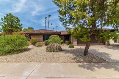 Scottsdale Single Family Home For Sale: 8306 E Via De Los Libros