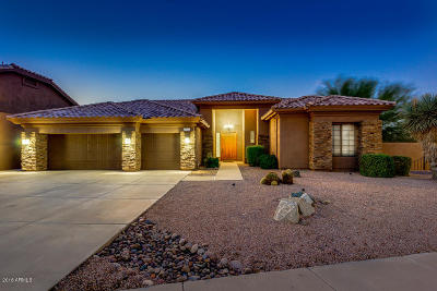 Phoenix Single Family Home For Sale: 2726 E Acoma Drive