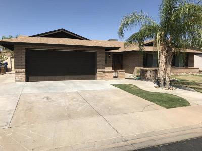 Mesa Single Family Home For Sale: 2426 W Pampa Circle