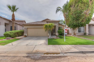 Chandler Single Family Home For Sale: 3650 S Hollyhock Place