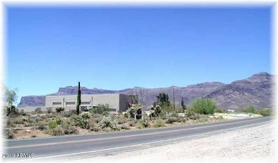 Gold Canyon AZ Residential Lots & Land For Sale: $115,000