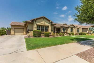 Queen Creek Single Family Home For Sale: 21524 E Camacho Road