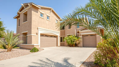 Chandler Single Family Home For Sale: 653 E Indian Wells Place