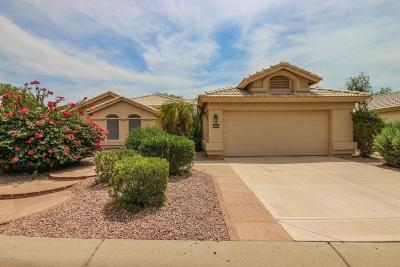 Goodyear Single Family Home UCB (Under Contract-Backups): 15421 W Earll Court
