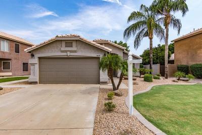 Mesa Single Family Home For Sale: 7424 E Lobo Avenue