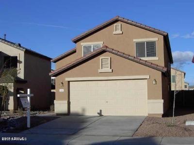 Maricopa Single Family Home For Sale: 41680 W Sunland Drive