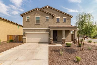 San Tan Valley Single Family Home For Sale: 348 E Toscana Drive