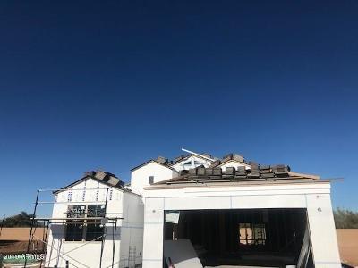 Casa Grande Single Family Home For Sale: 2410 E San Gabriel Trail