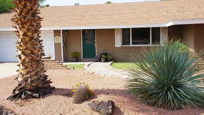 Phoenix Single Family Home For Sale: 3936 E Desert Cove Avenue
