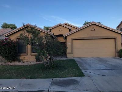 Glendale Single Family Home For Sale: 7613 N 51st Drive
