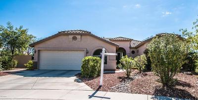 Mesa Single Family Home For Sale: 9717 E Greenway Street