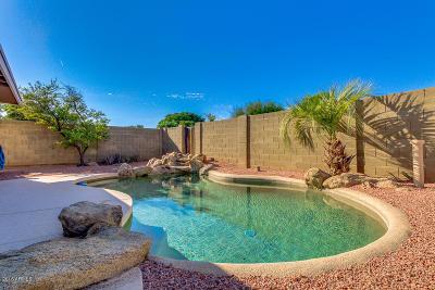 Phoenix Single Family Home For Sale: 2246 W Larkspur Drive