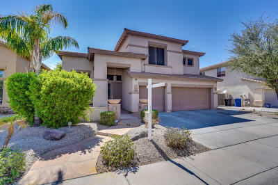 Chandler Single Family Home For Sale: 5866 S Robins Way