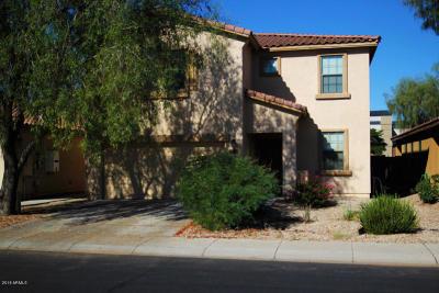 Maricopa Single Family Home For Sale: 20652 N Alma Drive