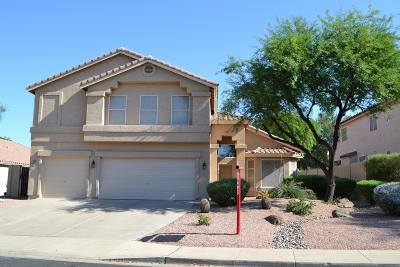 Mesa Single Family Home For Sale: 6216 E Riverdale Street