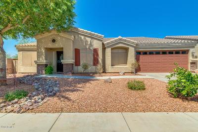 Casa Grande Single Family Home For Sale: 3931 N Dorado Lane