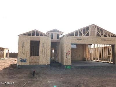 Casa Grande Single Family Home For Sale: 2413 E San Gabriel Trail