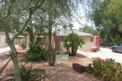 Tempe Multi Family Home For Sale: 1214 Farmer Avenue