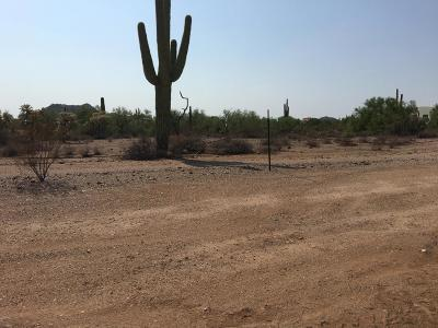 Mesa Residential Lots & Land For Sale: N 106th Way