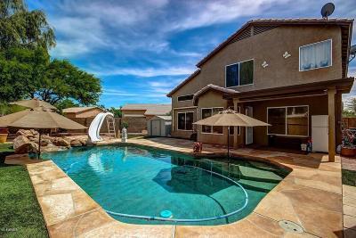 Mesa Single Family Home For Sale: 5062 E Harmony Avenue