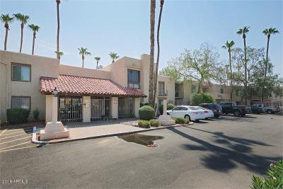 Scottsdale  Apartment For Sale: 3313 N 68th Street N #237