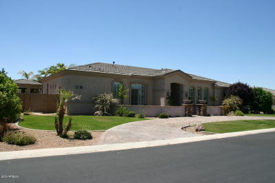 Mesa Single Family Home For Sale: 3246 E Ivyglen Circle