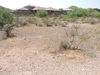 Phoenix Residential Lots & Land For Sale: 25 W Sagebrush Drive