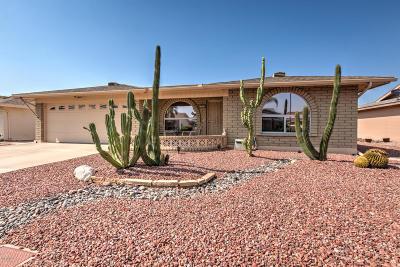 Mesa Single Family Home For Sale: 7850 E Monte Avenue