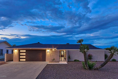 Sun City AZ Single Family Home For Sale: $425,000