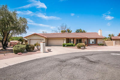 Phoenix Single Family Home For Sale: 12142 S Tomi Drive