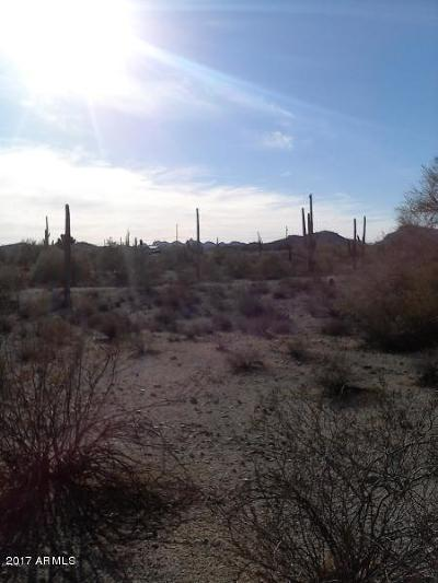 Queen Creek Residential Lots & Land For Sale: W Adobe Dam Road