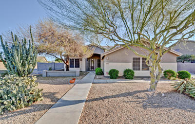 Peoria Single Family Home For Sale: 8058 W Via Montoya Drive